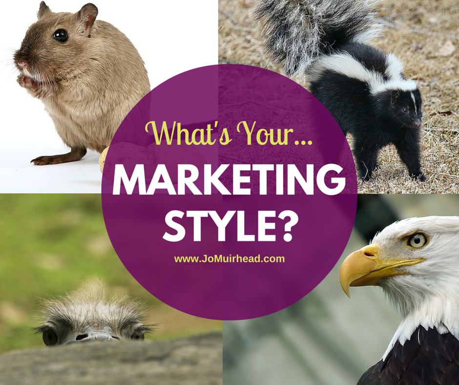 what's your marketing style image V1