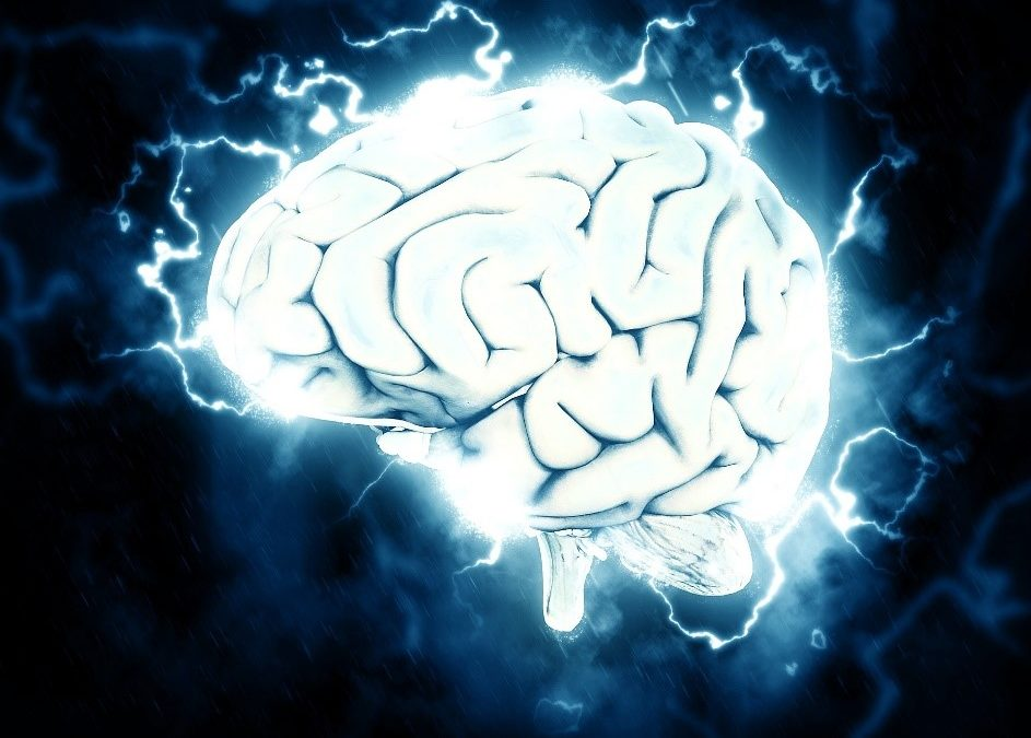 The #1 Neuroscience Hack You Need to Implement Now!
